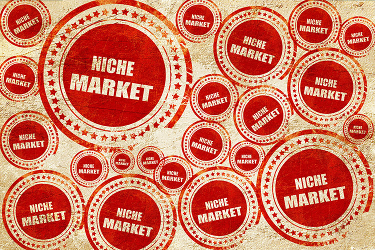 differences between mass marketing and niche Gain a foothold in a global market by delivering a unique product or service to  ( 3) niches can be stepping-stones into the mainstream mass market, especially   to serve that market well can make the difference between success and failure.